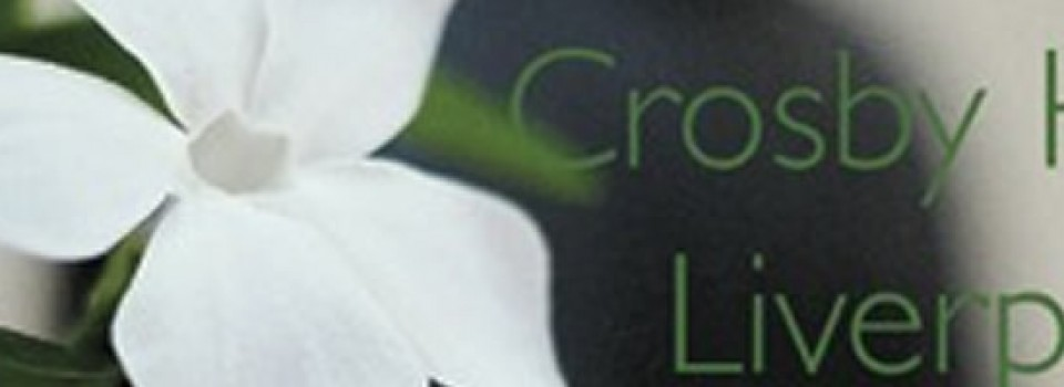 crosby banner
